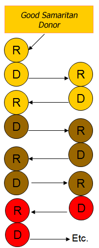 Donor Chain Graph